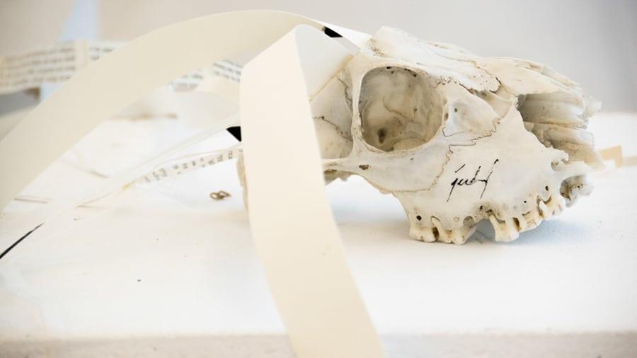 MS01 Zentrum oder – führen alle Wege nach oder aus Rom? 26 × 9 × 9 cm Knochen / Papier / Tusche 2013