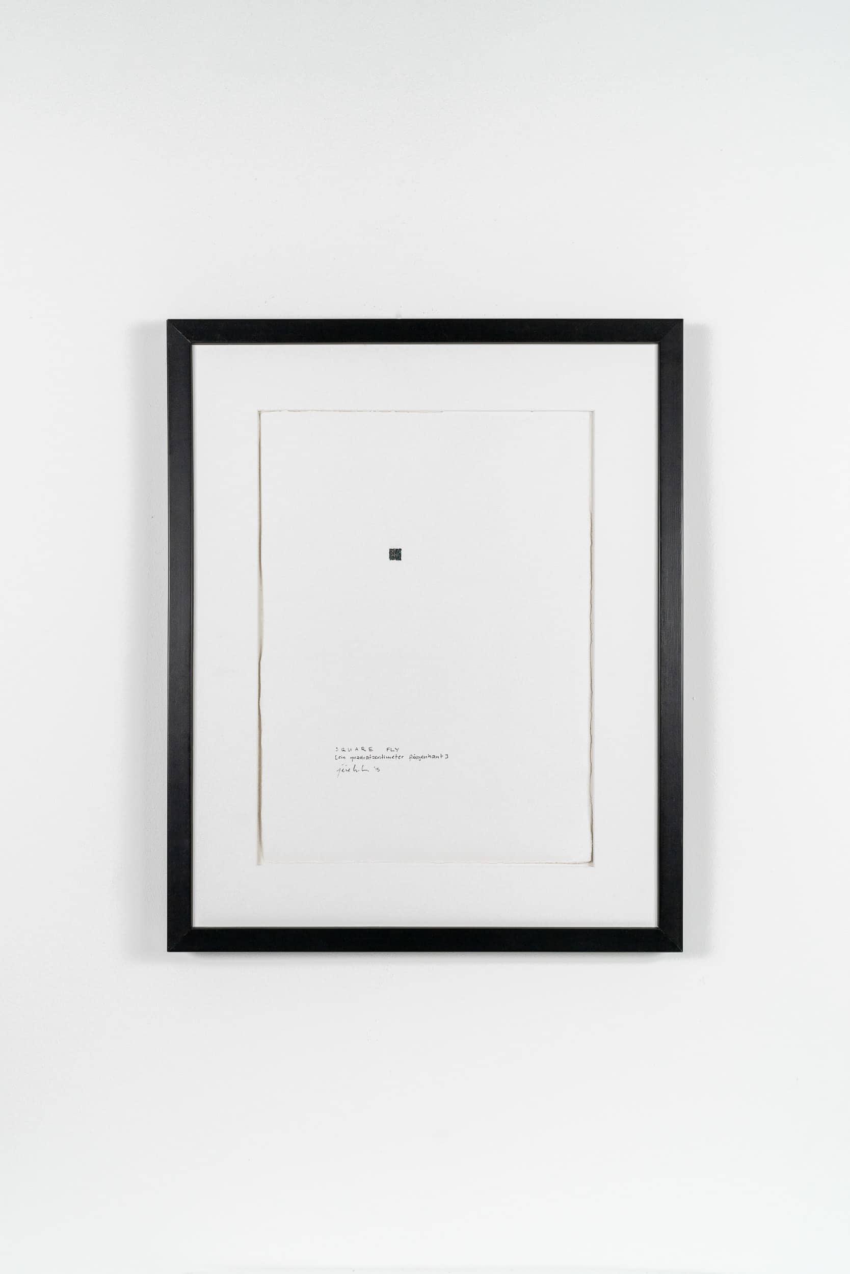 FL04 Flyland 40 × 50 cm Papier / Tusche / Holzdruck / Fliegenhaut 2013