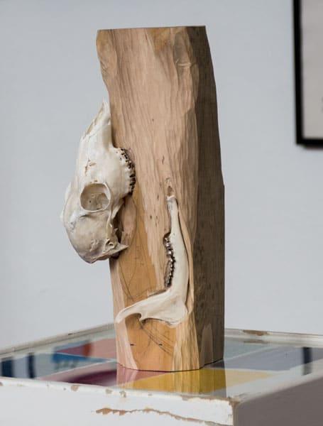 SiL27 Knospe ca. 40 × 16 × 16 cm Knochen / Holz / Graphit / Text 2013 4 Knochen – Stein – Papier